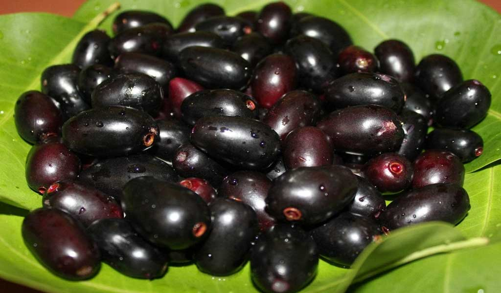 Jamun ke gazab ke fayde (Health Benefits of Blackberry)