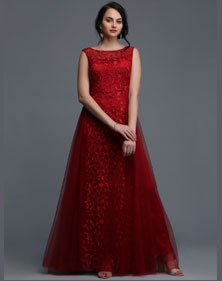 Net Flared Gown