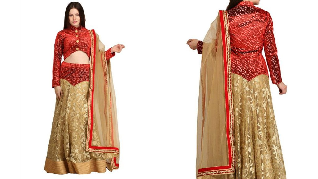 Embroidered Lehenga With Red Velvet Blouse