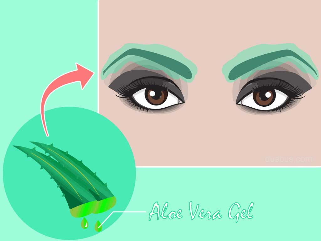 Apply aloevera gel for thicker eyebrows